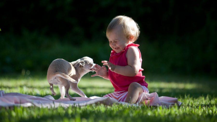 Особенности воспитания гиперактивных детей
